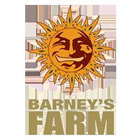 Barneys farm deutsch